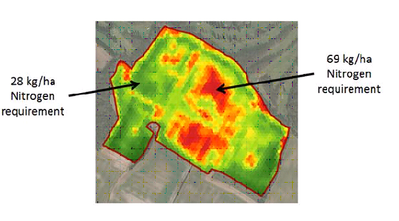 High crop variation drives variable rate opportunity for