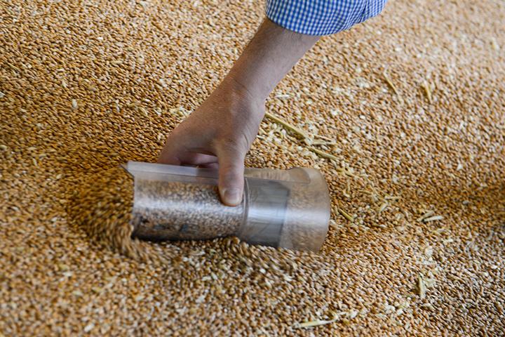 grain sampling cover
