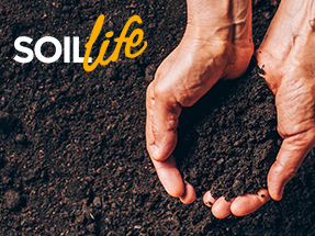 download soil life info