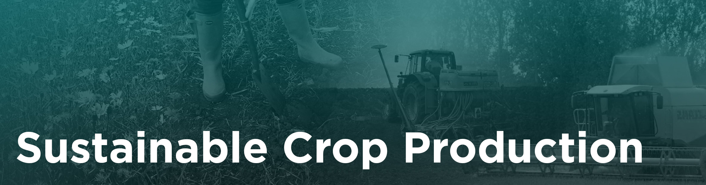 Sustainable Crop Production
