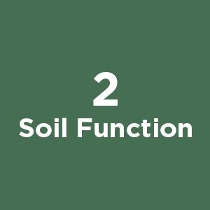 Soil Function