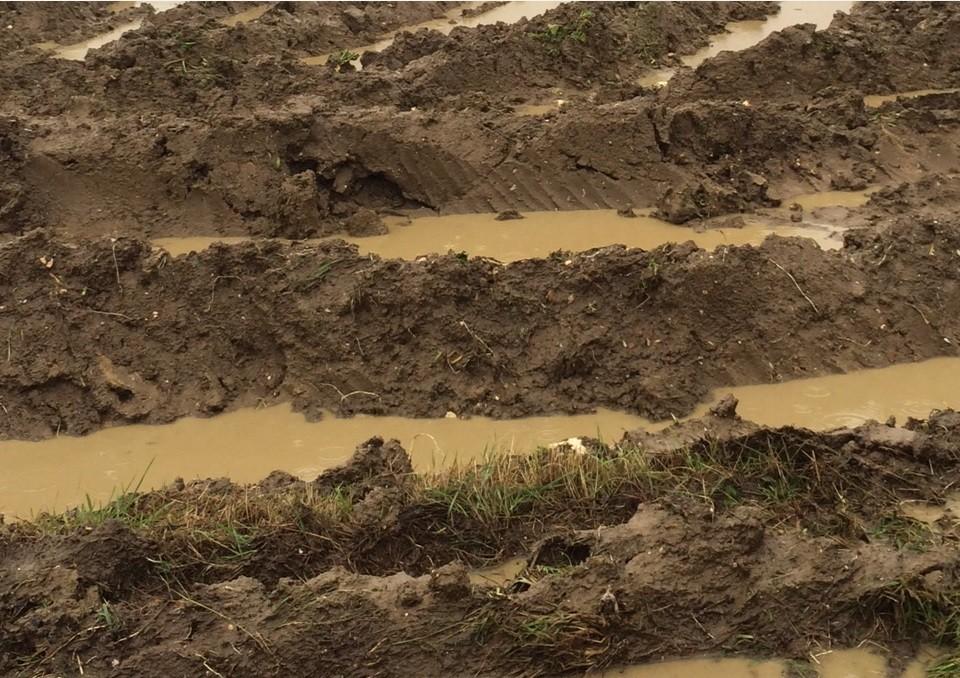 Soil: your farm's greatest asset - Frontier Blog ...
