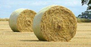 straw-bales-blog