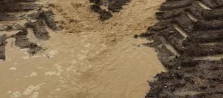 flooded-soils