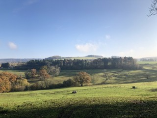 Countryside Stewardship now open for 2021 agreements