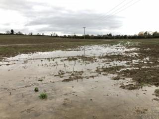 Flooded-soil