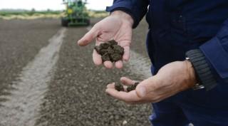 soil-carbon