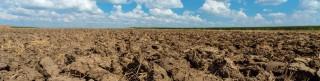 soil-panoramic