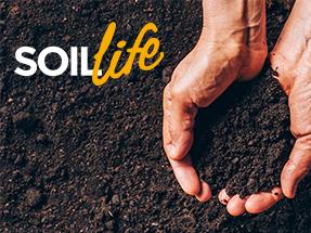Soil Life CP Grid